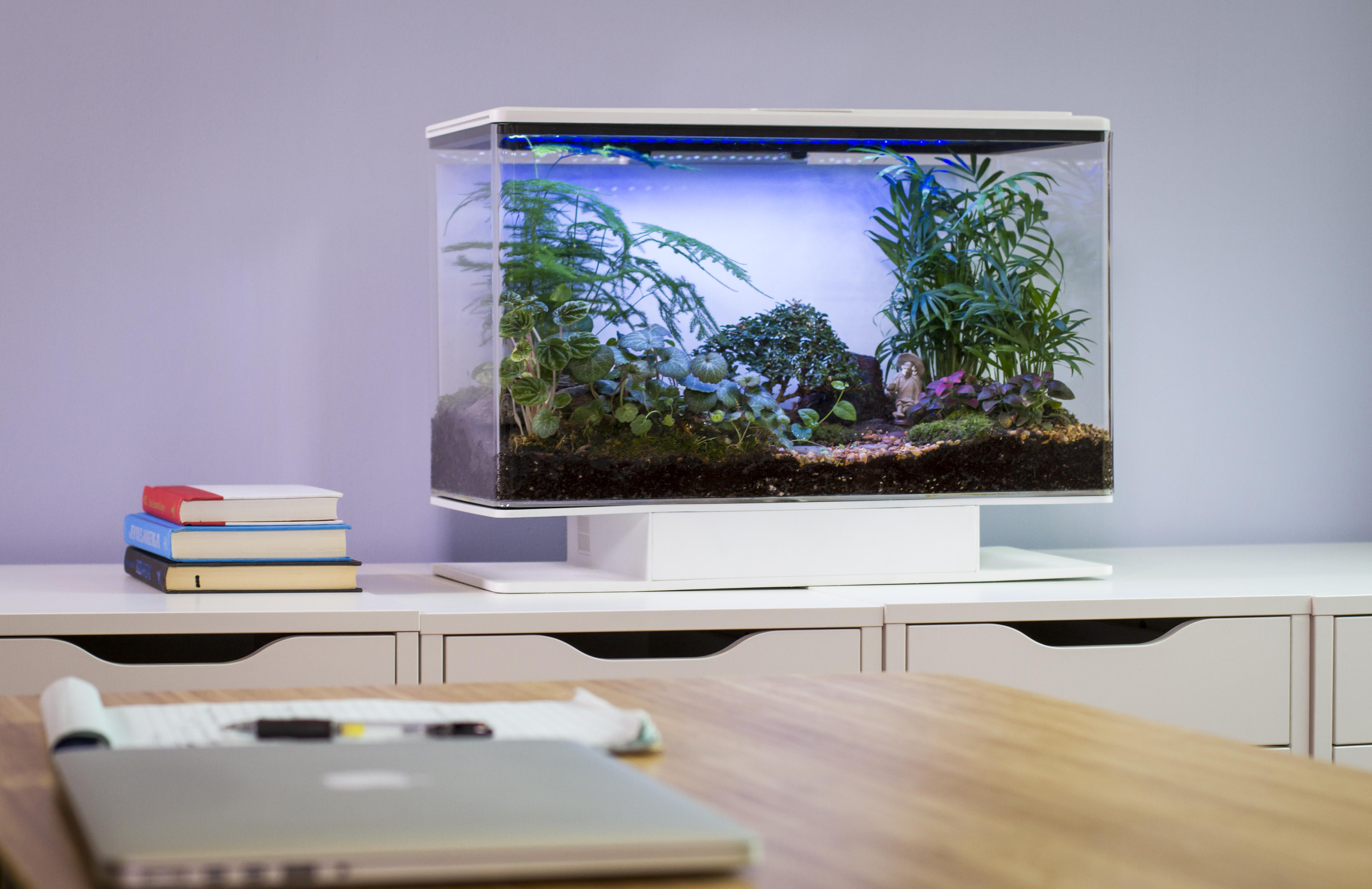 SmartTerra Kickstarter