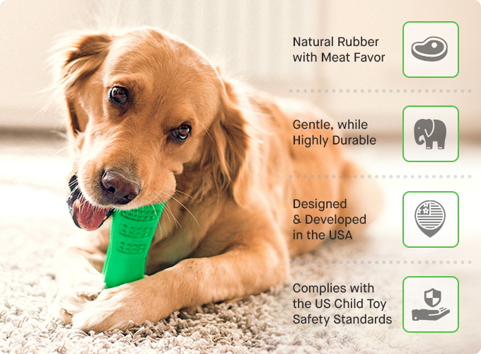 Bristly Dog Toothbrush Kickstarter